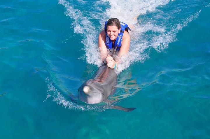 golfinhos-cancun